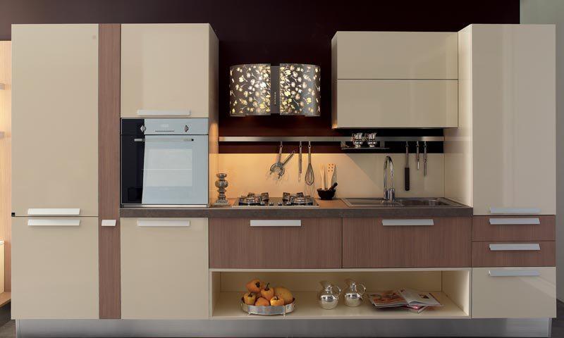 Kitchen Cabinets Modern modern kitchen cabinets | european cabinets & design studios