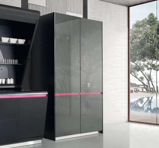 Modern Kitchen Cabinets Kook By Karim Rashid European